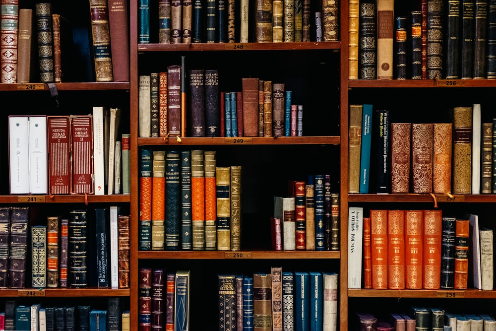 assorted-title of books piled in the shelves