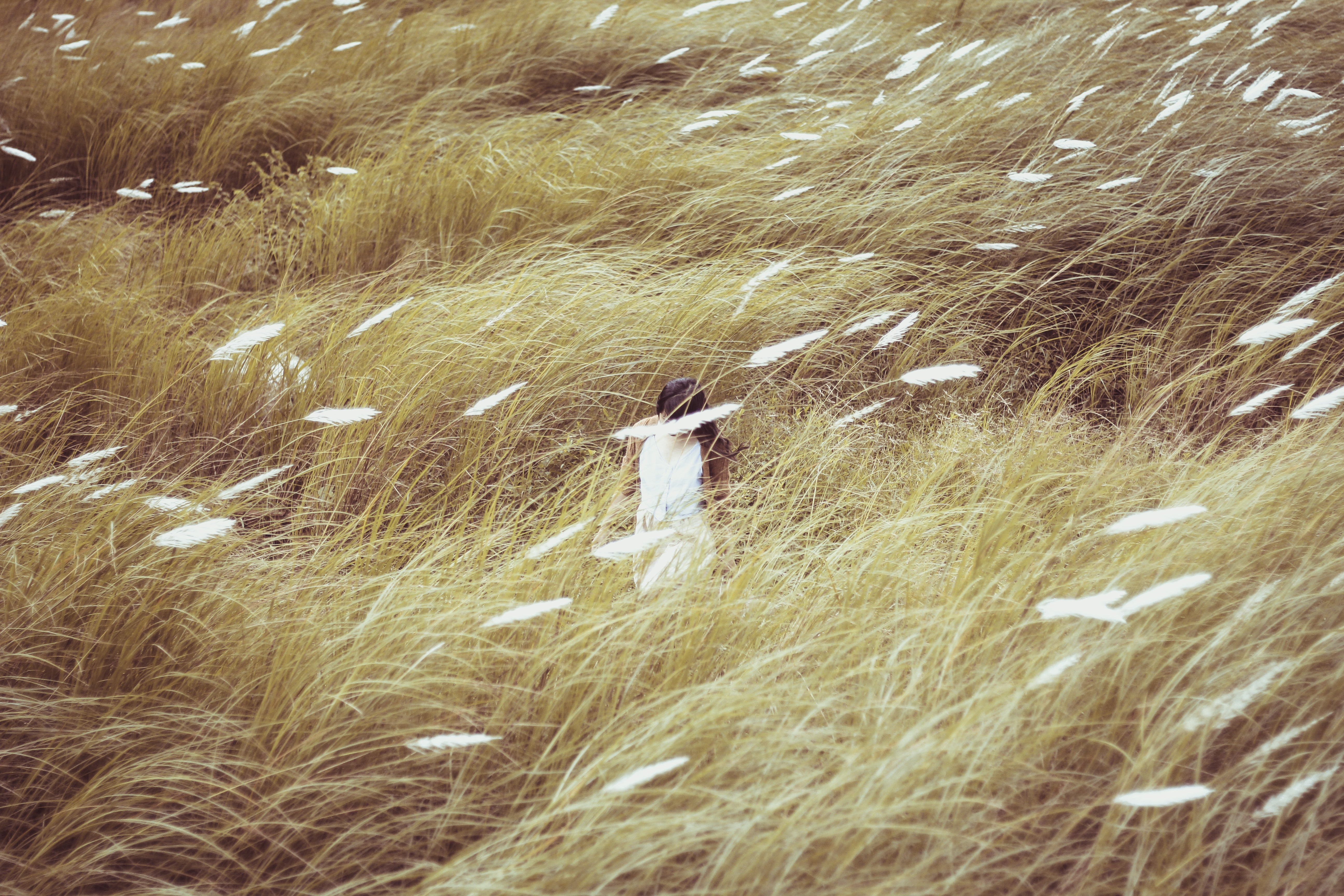 woman wearing dress standing on ground and surrounded by grass