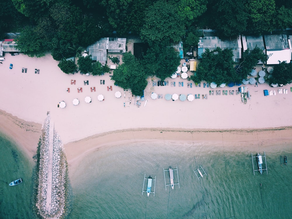 beach surrounded by trees and boats on ocean during daytime