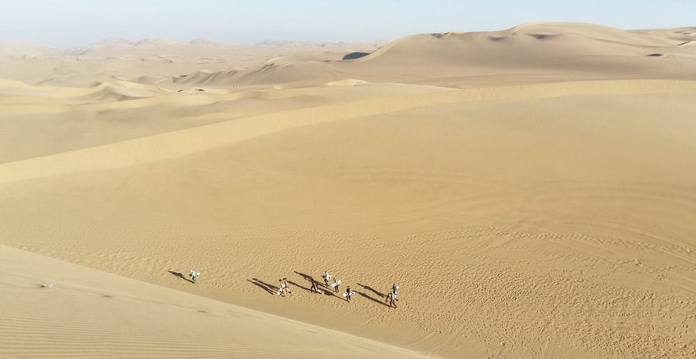 people walking in desert