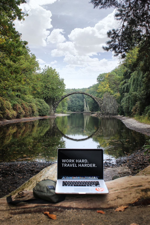 silver MacBook Pro on brown wood log