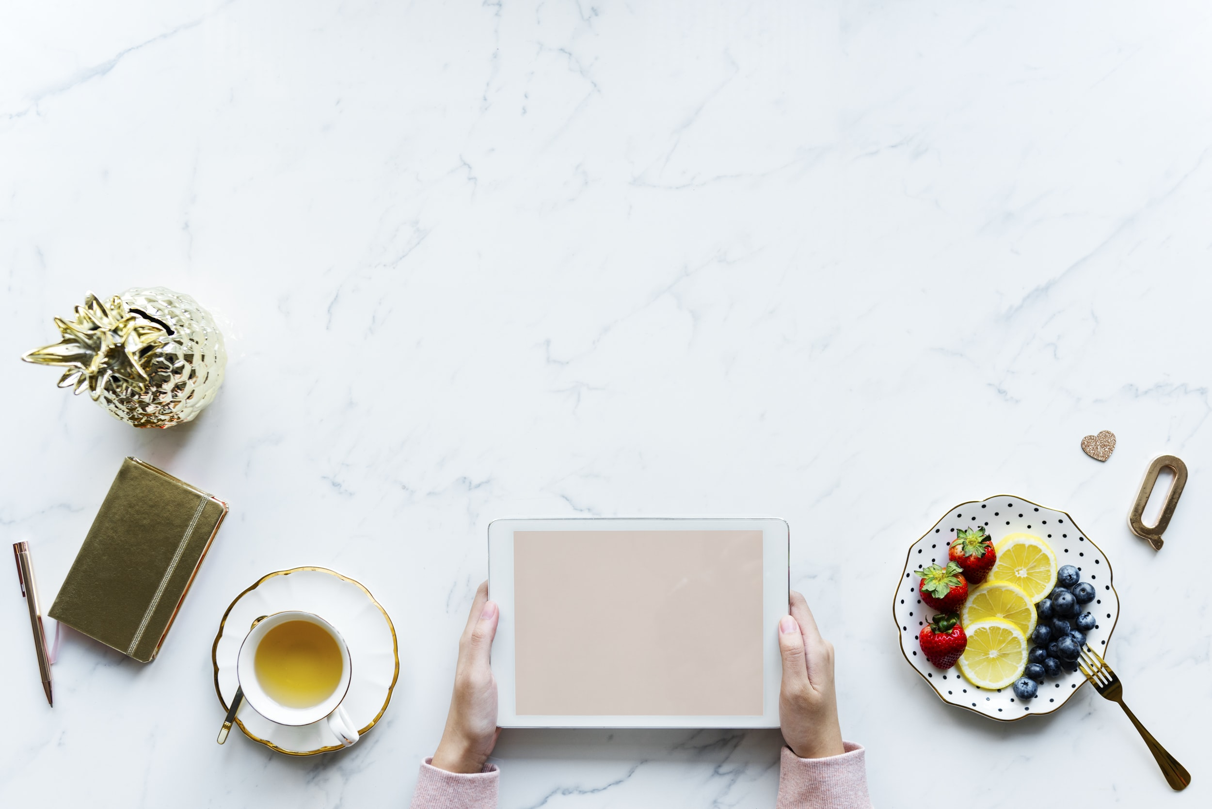 person holding white plate