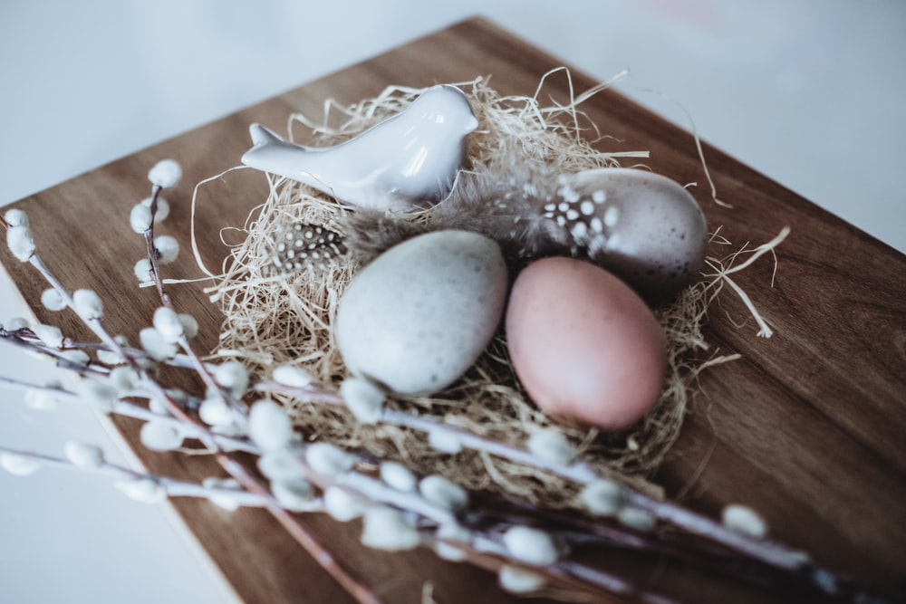 low light photography of three decorative eggs on nest