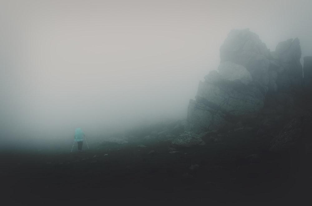 灰色の岩の横に立っている人
