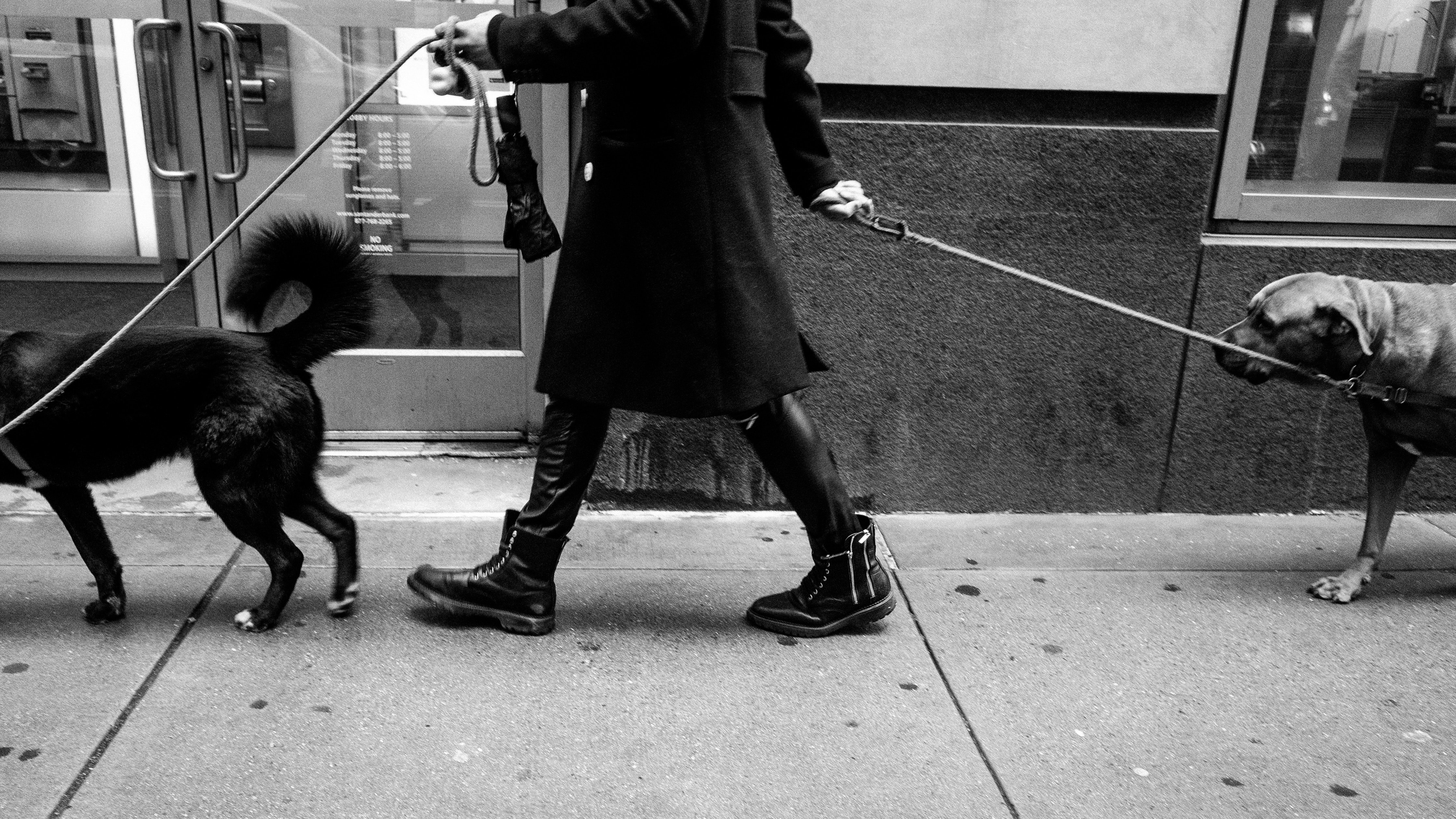 grayscale photography of person in black coat