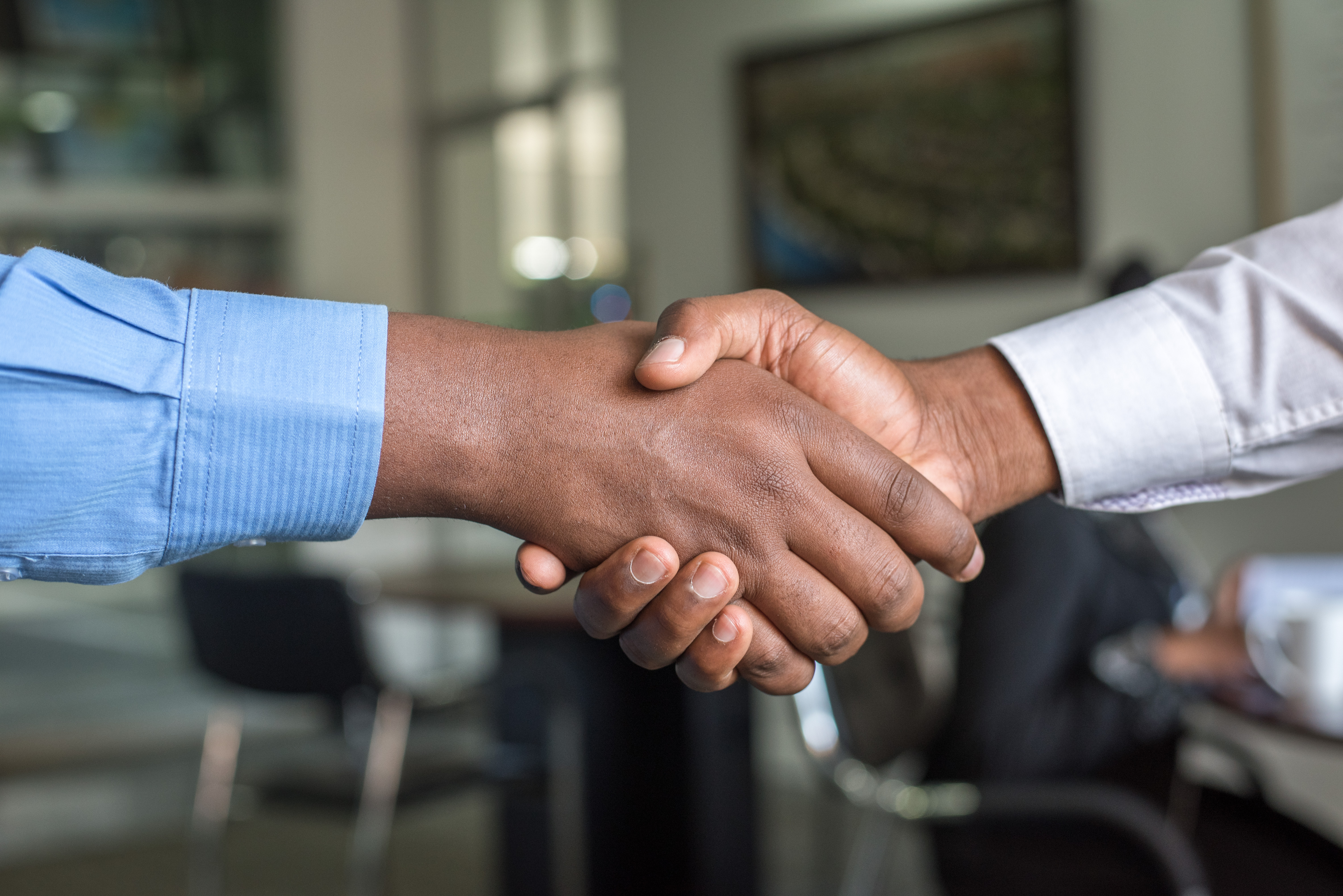 Employee Promotion - Internal or External?