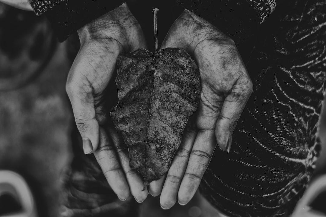 The Healing Hands