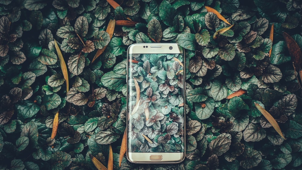 silver titanium Samsung Galaxy S7 edge on leaves graphic surface
