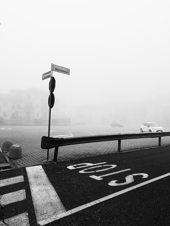 photography of paved road cover by fog