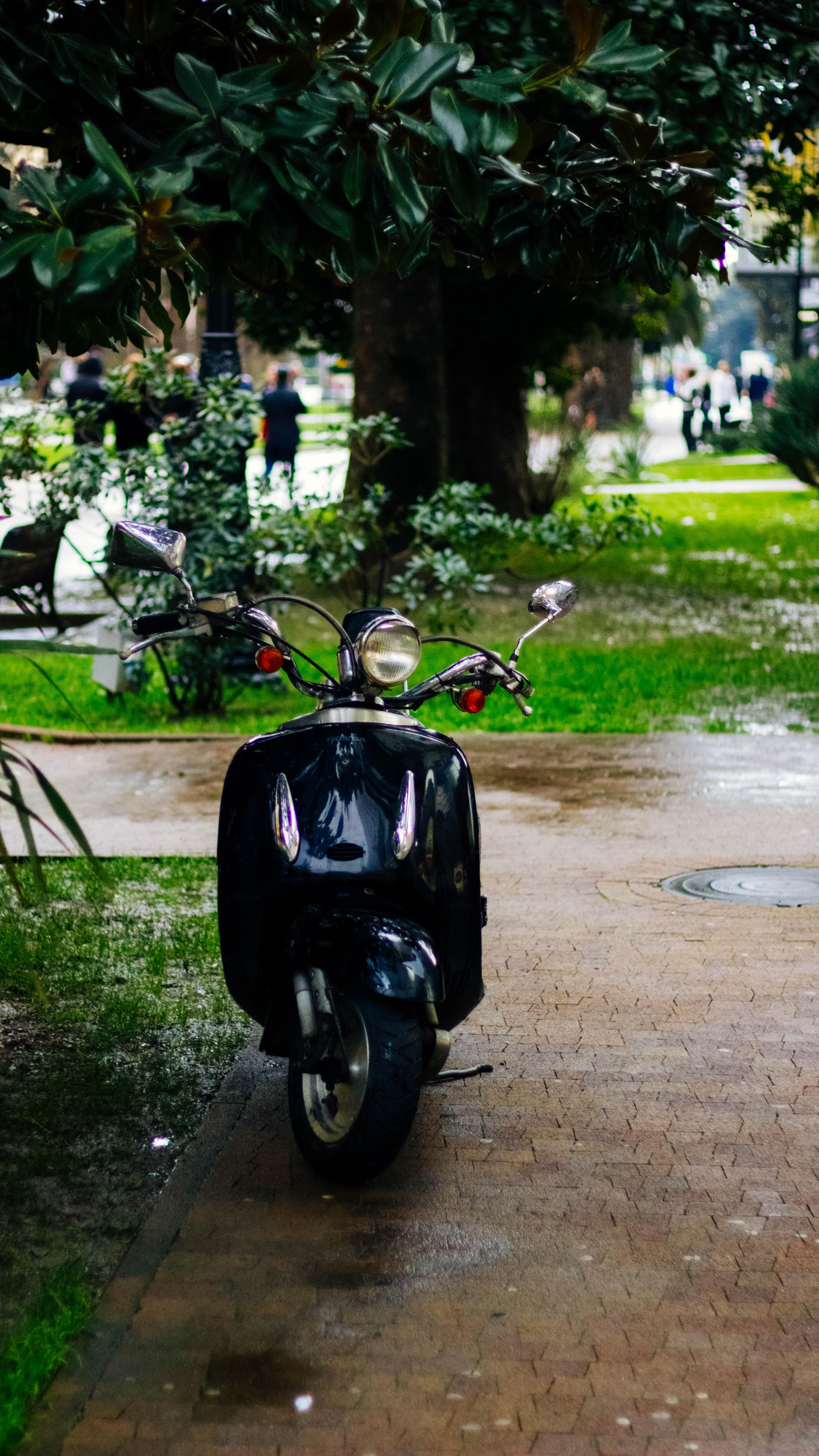 black motor scooter beside tree