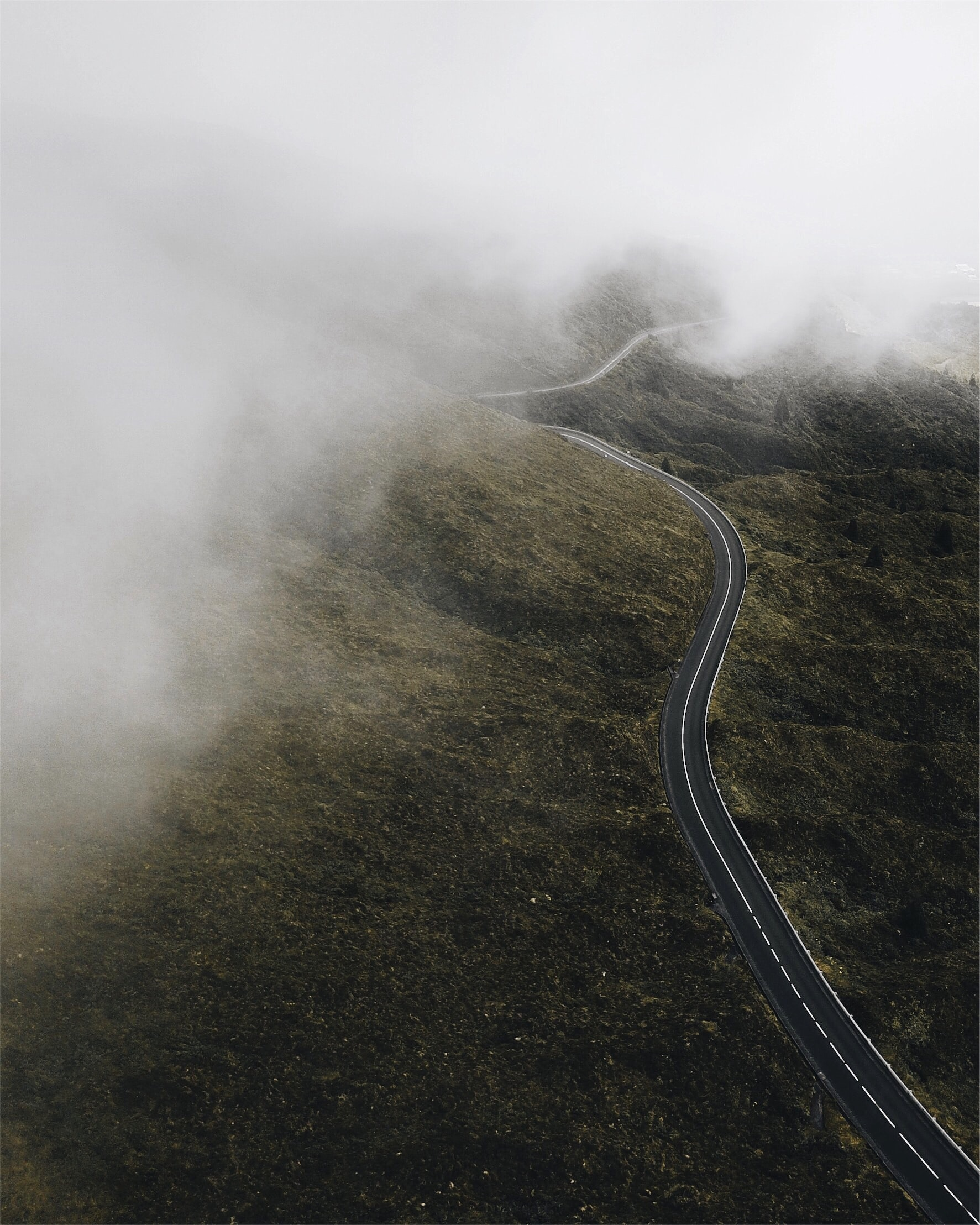 Guess I'm Happy.   Who Knew? stories