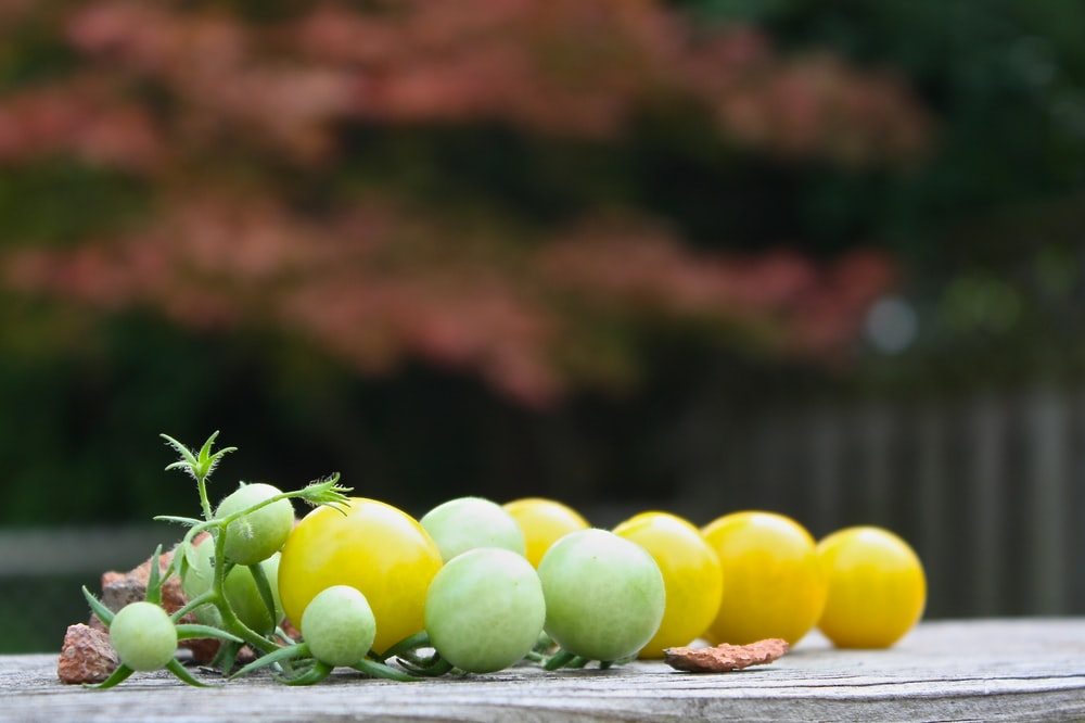 green and yellow fruits on table