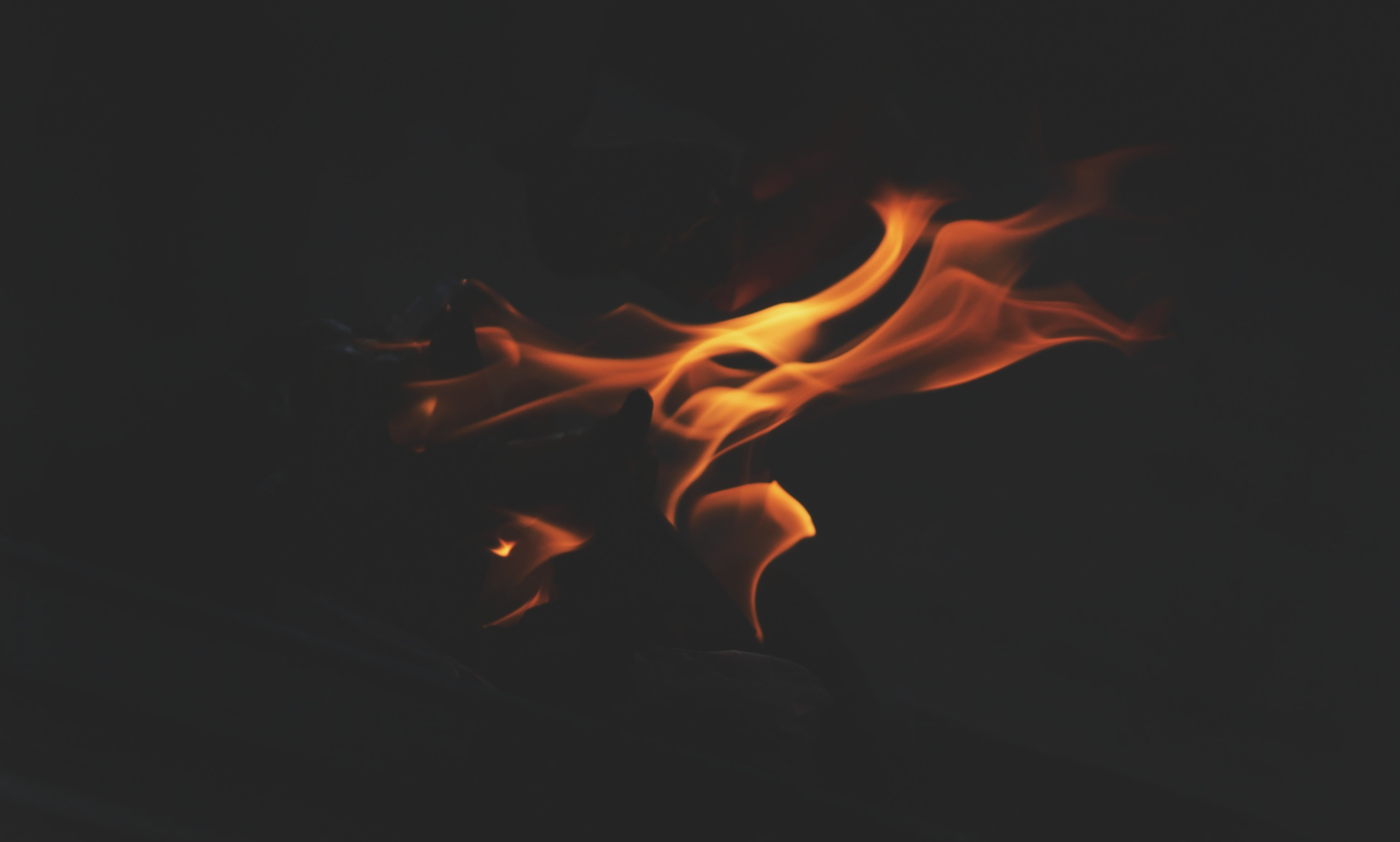 photography of bonfire