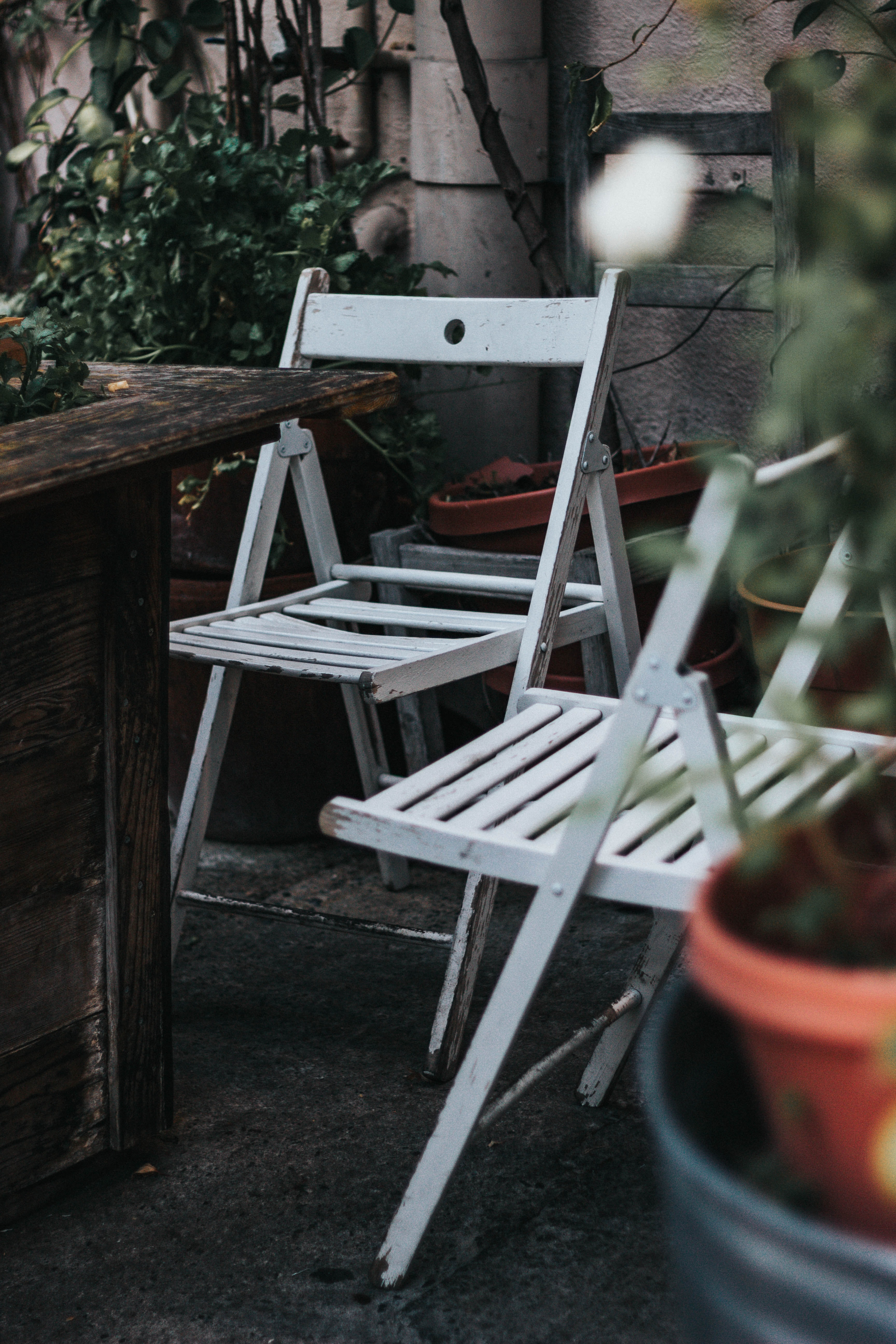 two white wooden folding chairs