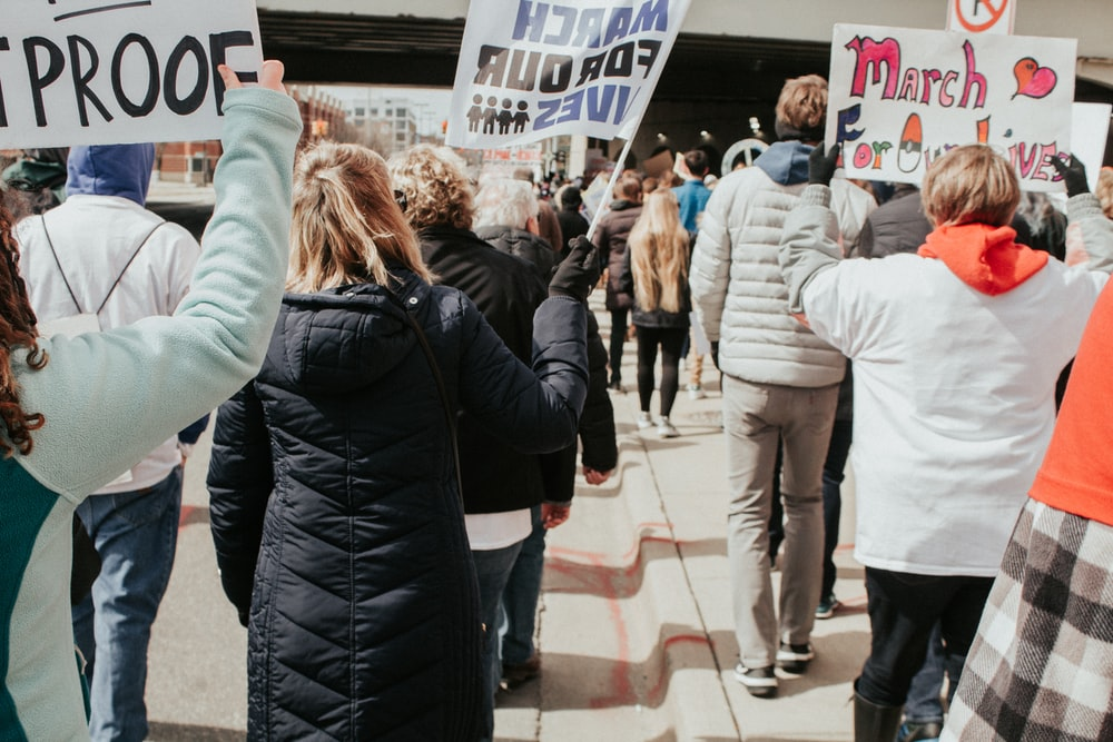 people holding posters and flyers during daytime