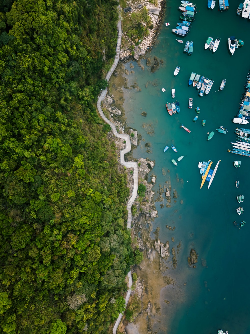 bird's eye view of shore with boats