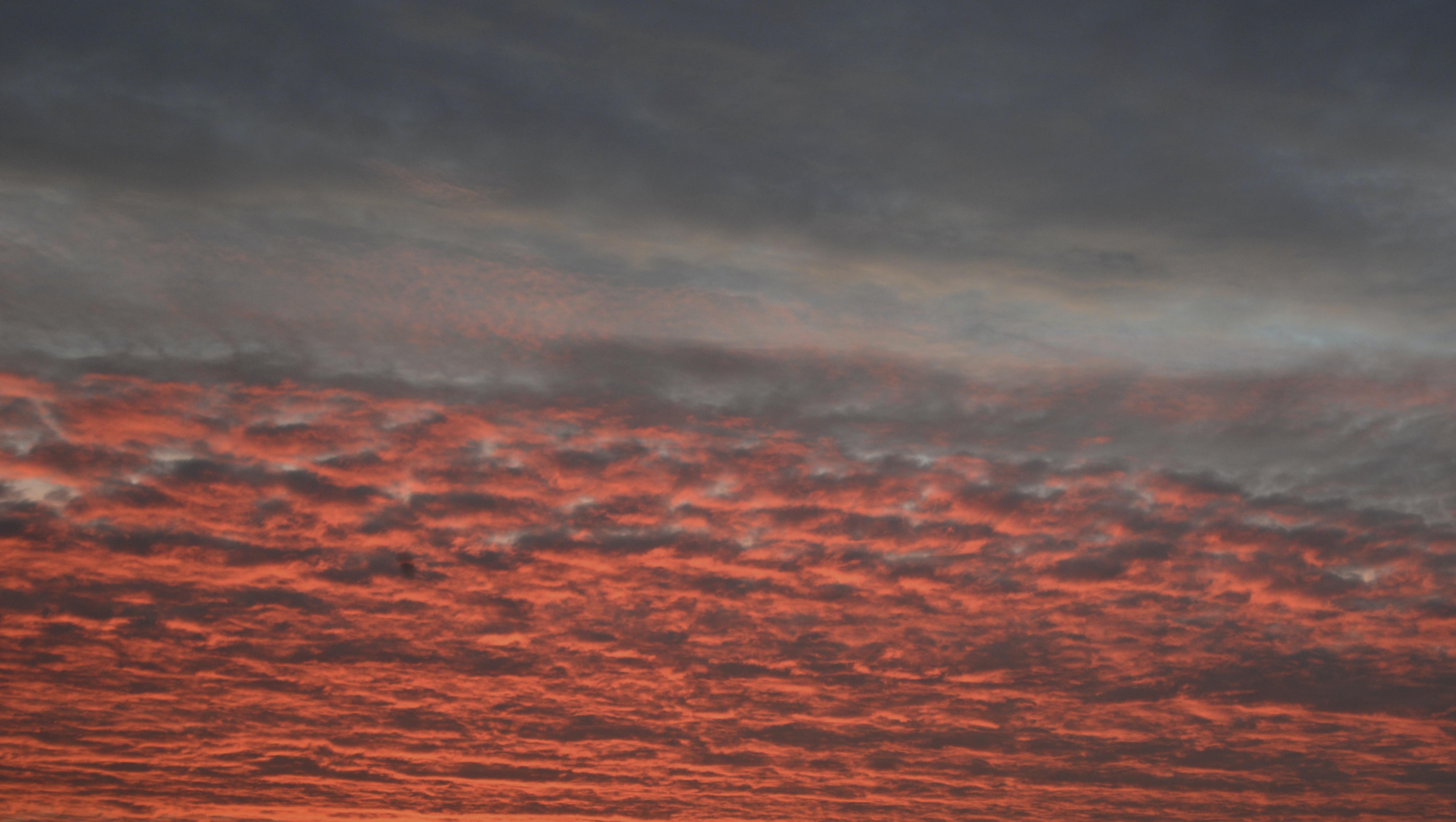 bird's eye view photo of red skies
