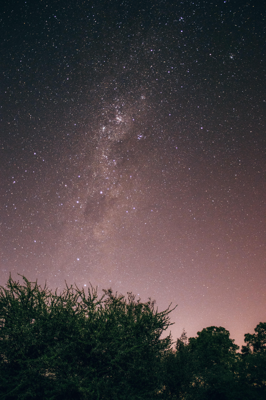 starry sky digital wallpaper