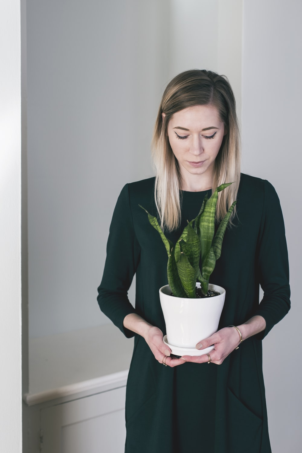 woman holding the potted green viper plant