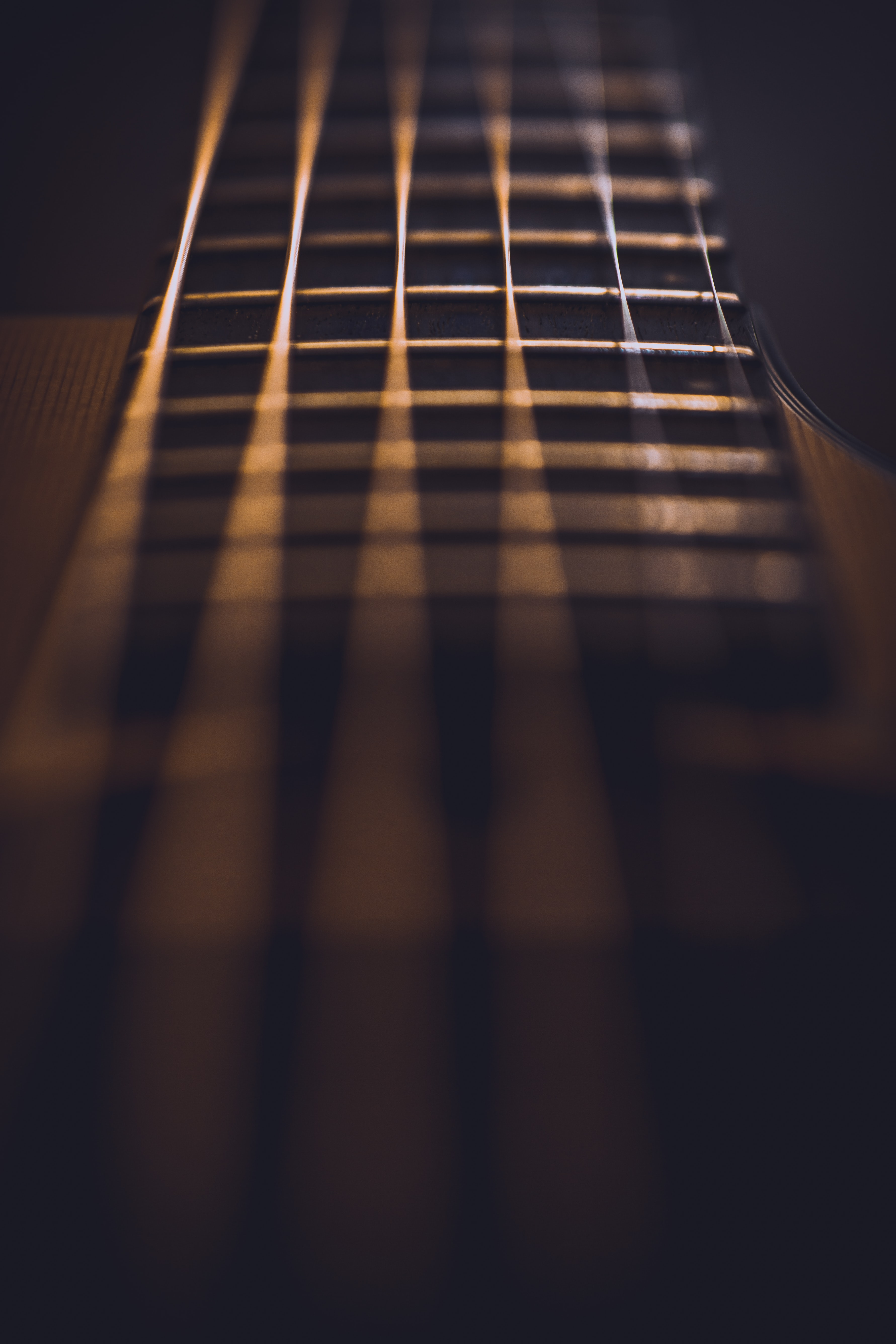 close-up photo of guitar strings