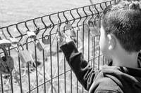 grayscale photography of boy holding padlock on fence