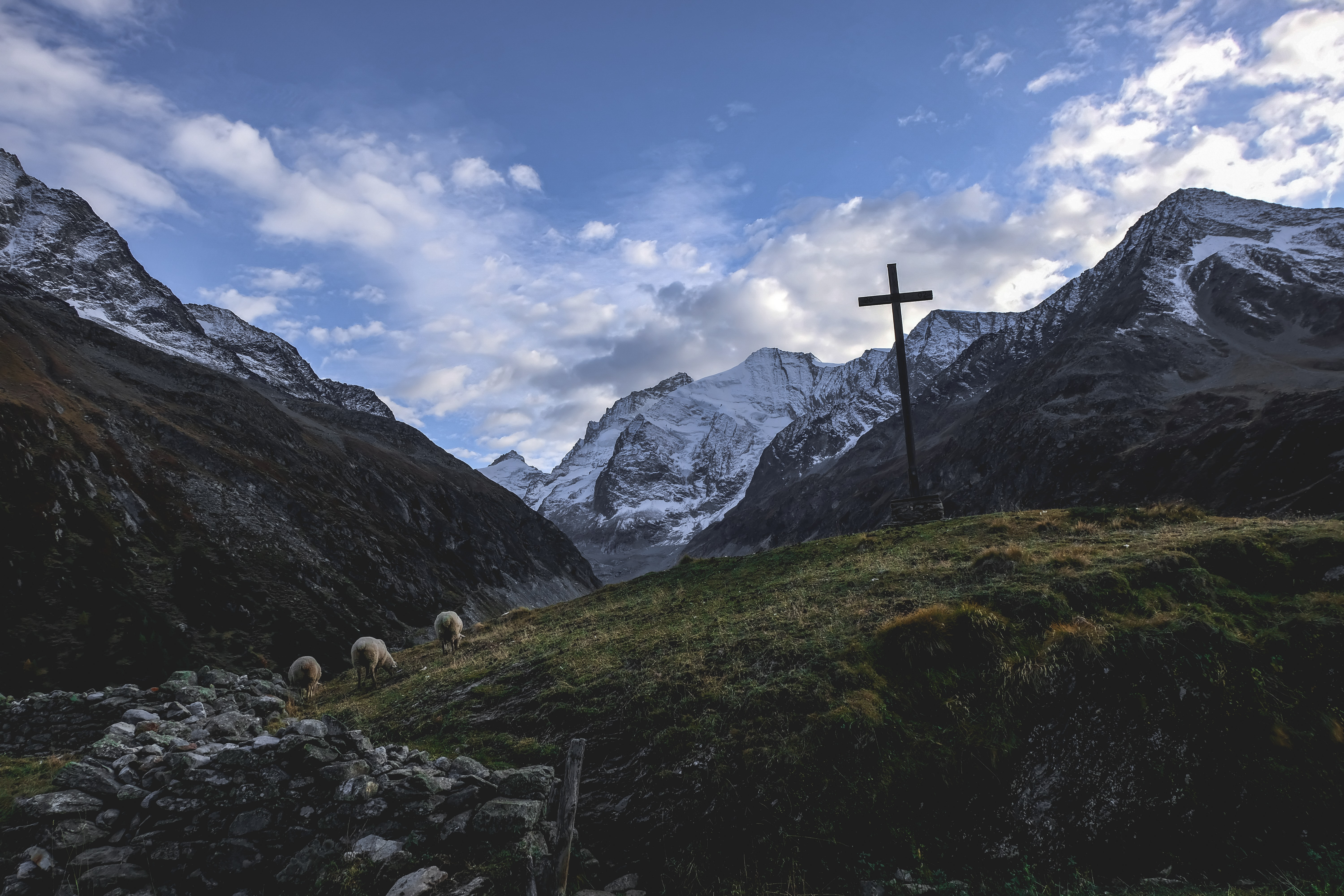 photography of mountain valley with sheeps and cross