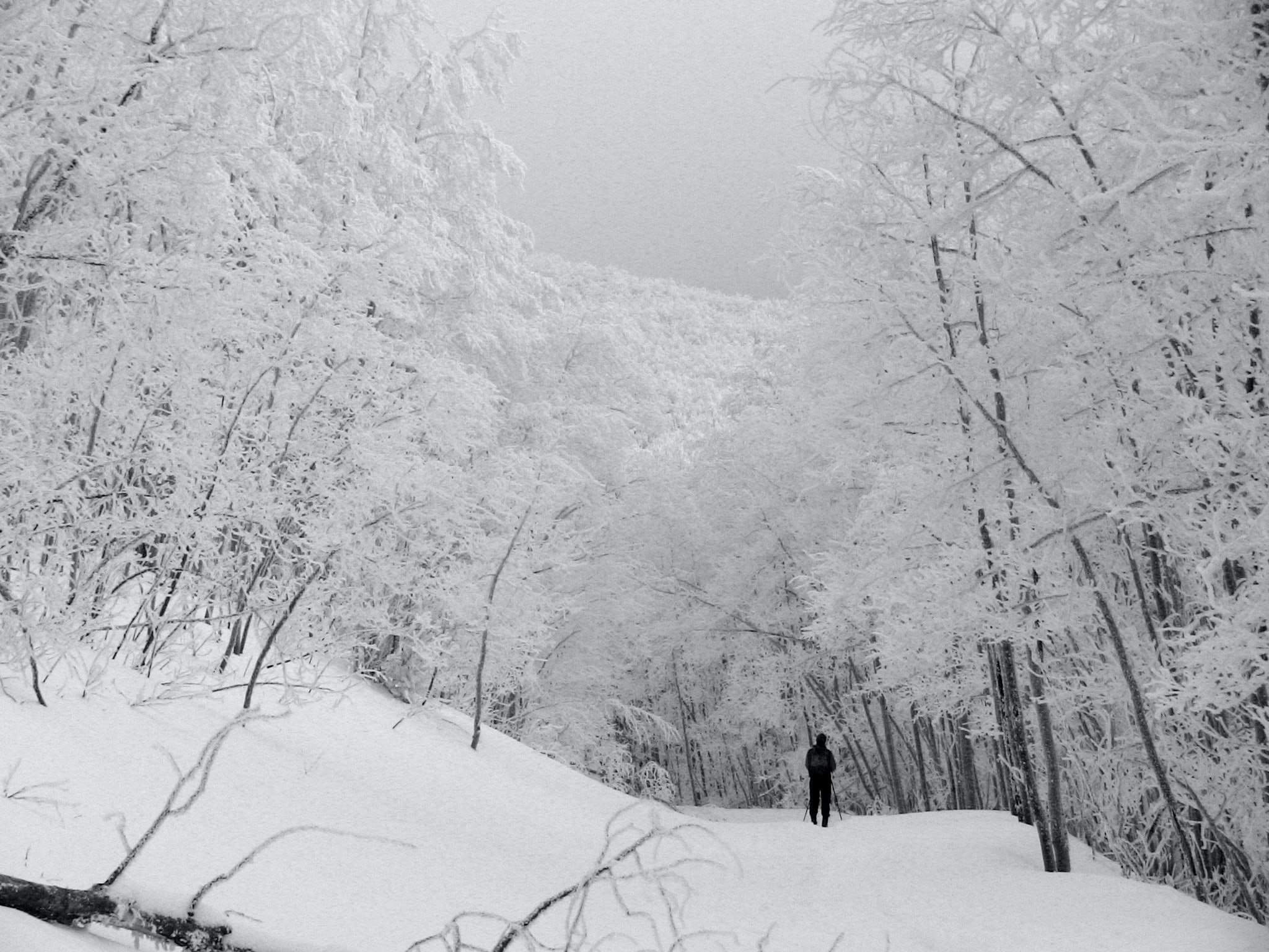 man walking on snow covered hills during daytime