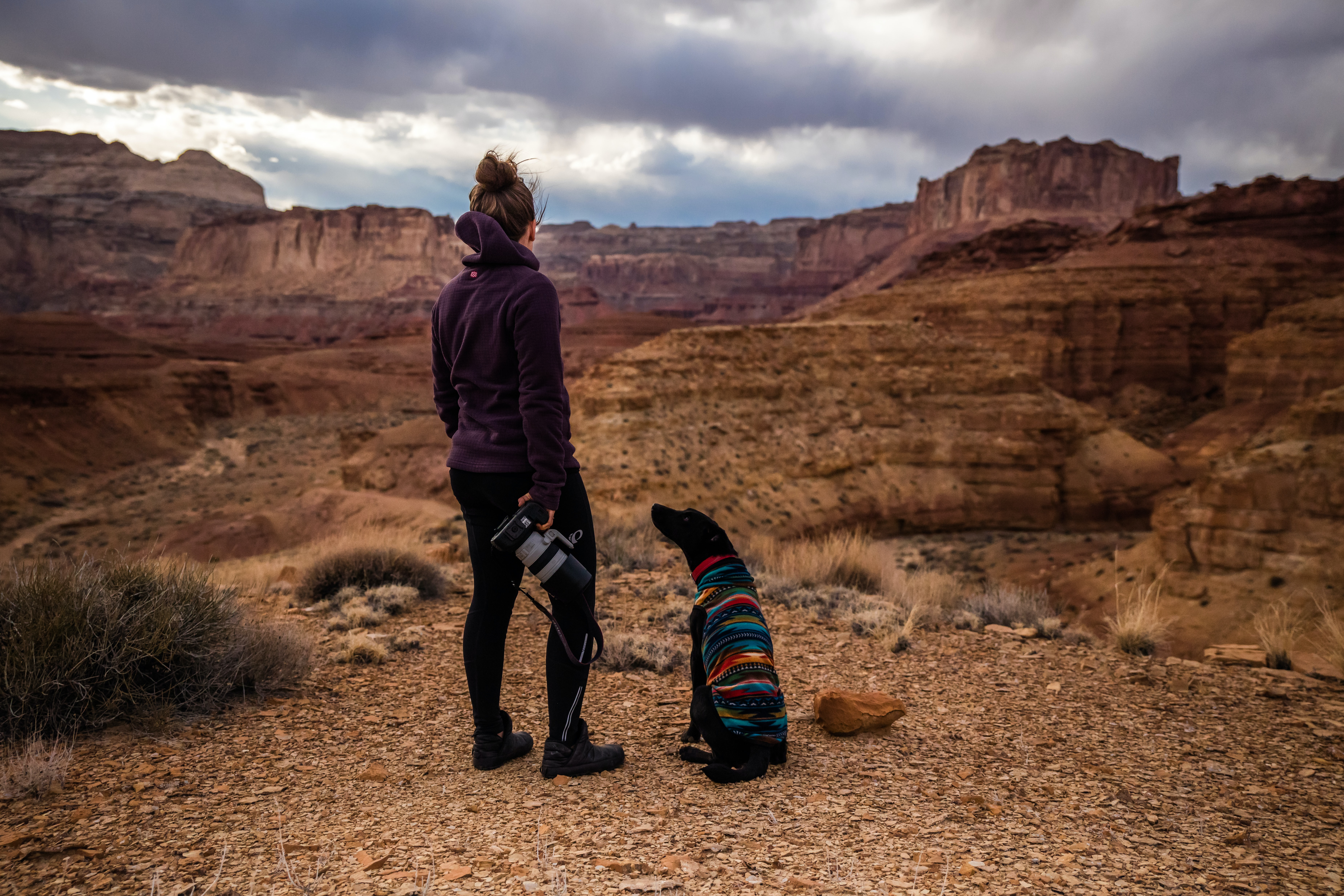dog looking up on woman wearing black hoodie looking at brown canyon hills