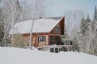 cabin near snowy forest