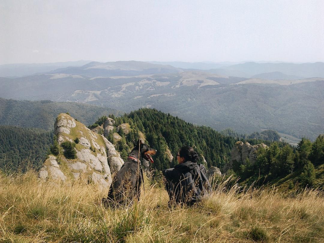 View from Gropsoarele Peak, Romania