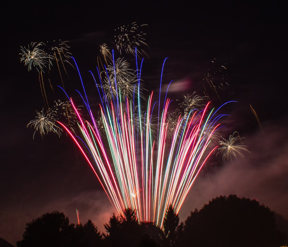 silhouette of tree under multicolored fireworks