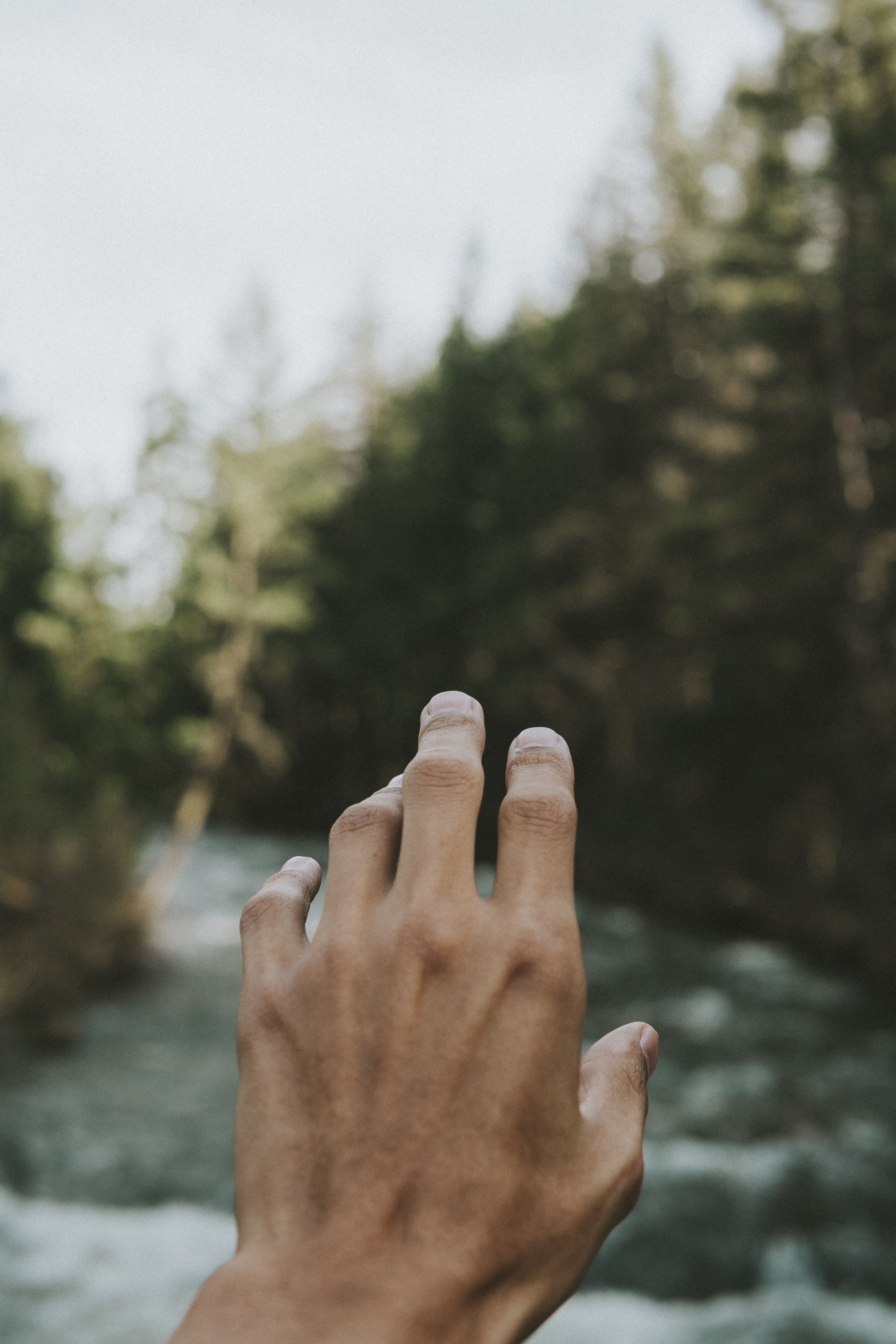 person's hand in shallow focus