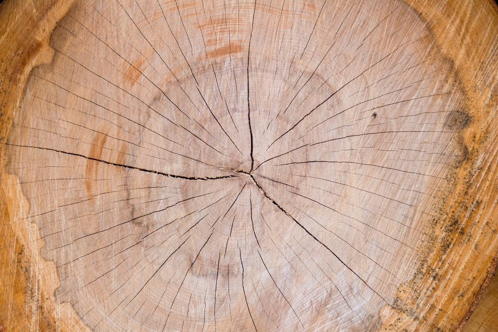 brown wood slab