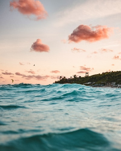 Swimming in Tulum, Mexico by Andy McCune (@andy)