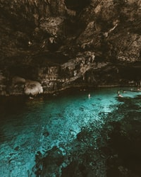photography of people swims on body of water with cave