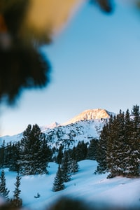 landscape photo of gray mountain covered with snow