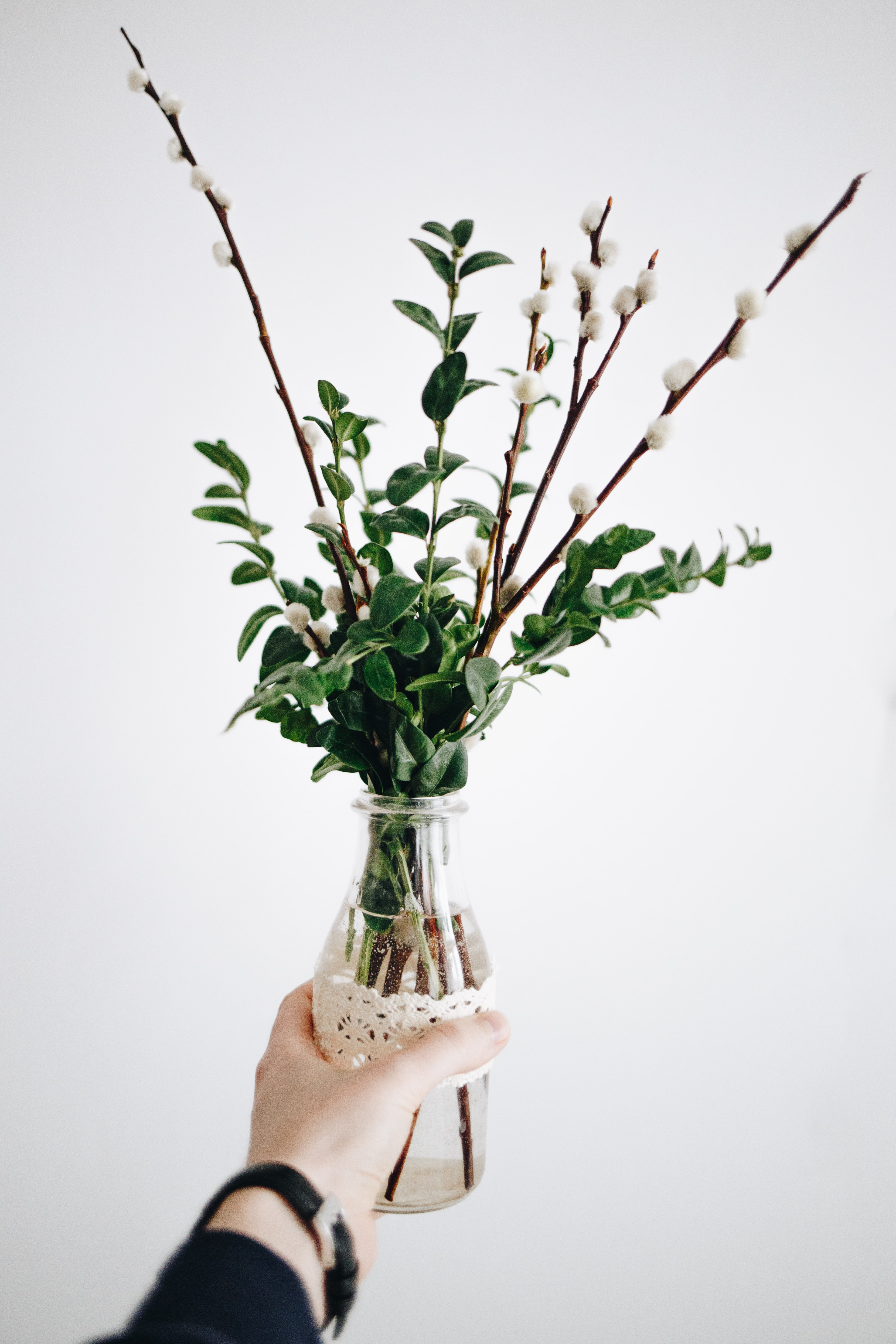 person holding clear glass bottle with plant