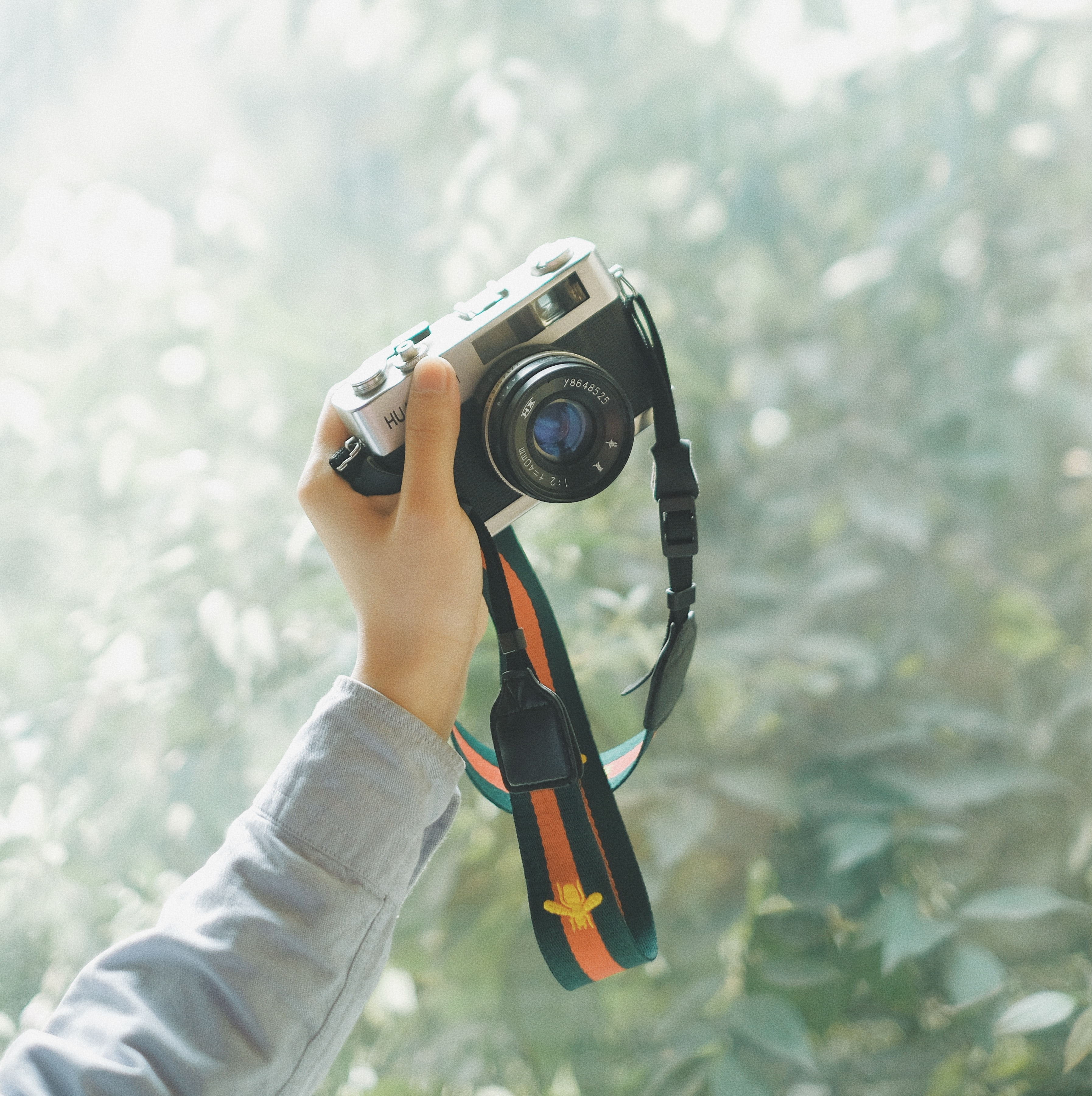 person holding grey and black mirrorless camera in front of green leafed trees during daytime