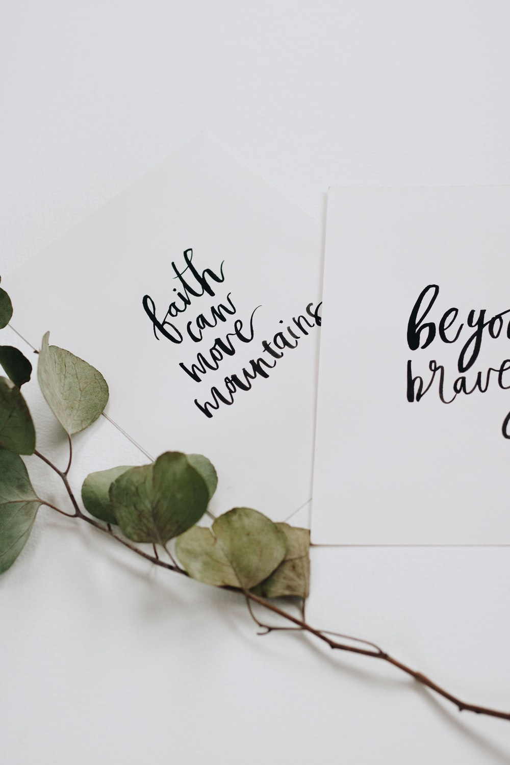 green rose leaves and two cards flat lay photography