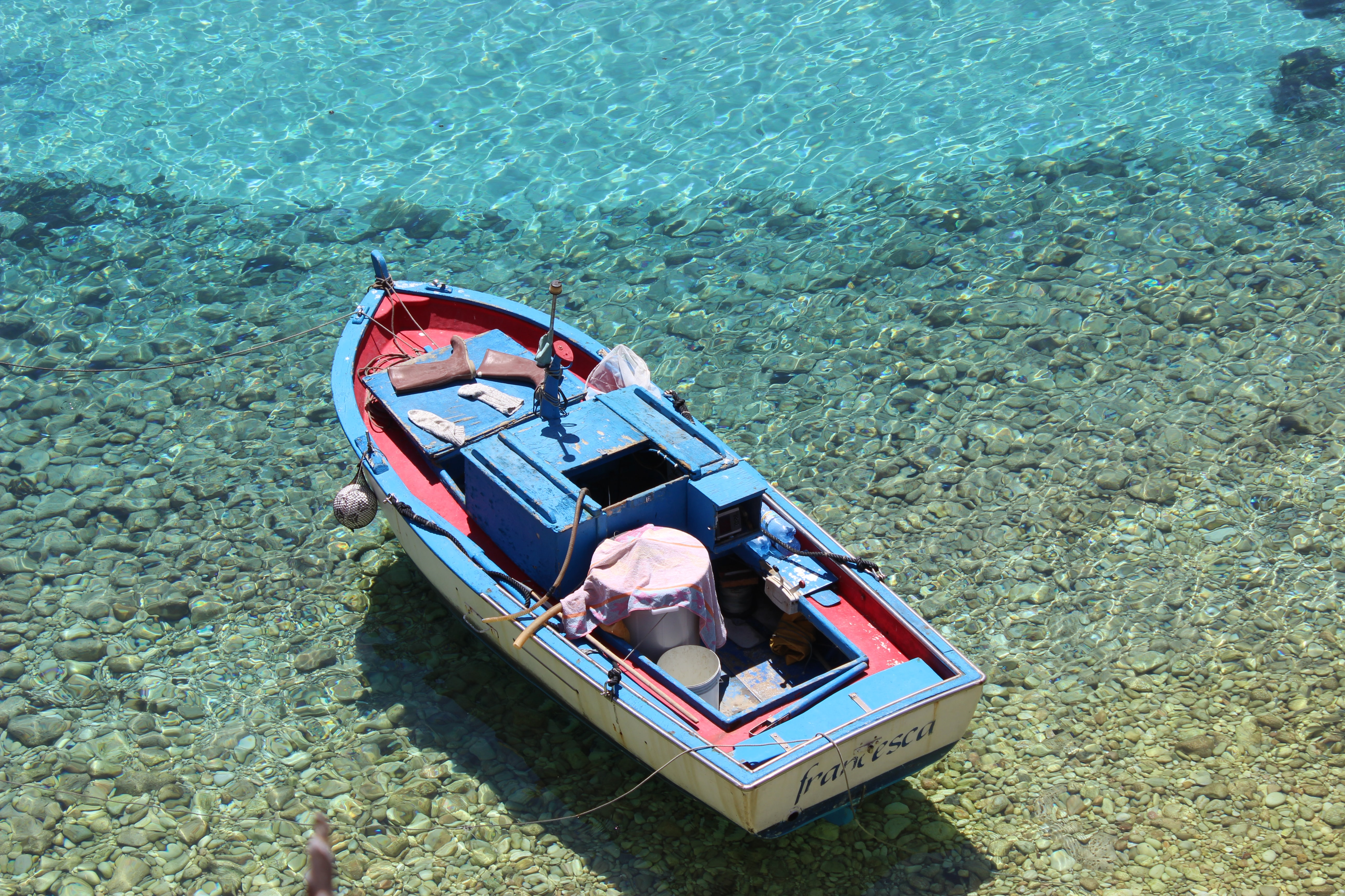 blue and red boat toy on body of water