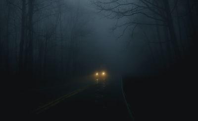 vehicle on road between trees spooky teams background
