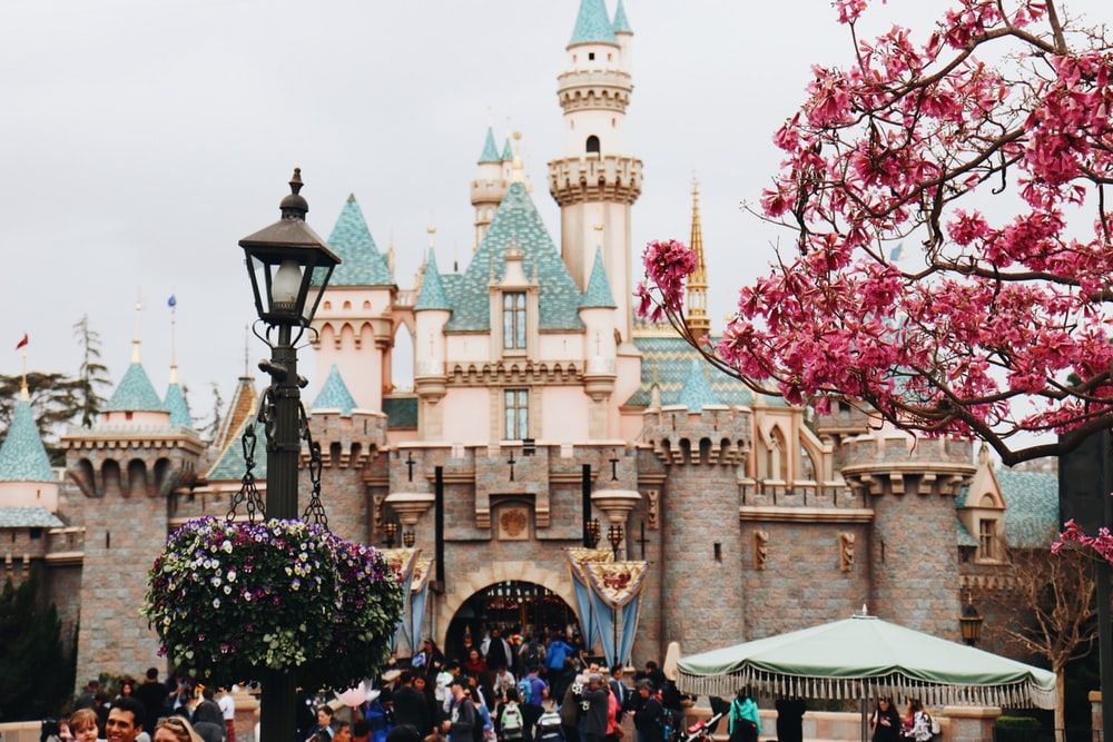 people walking near Disney Castle at daytime