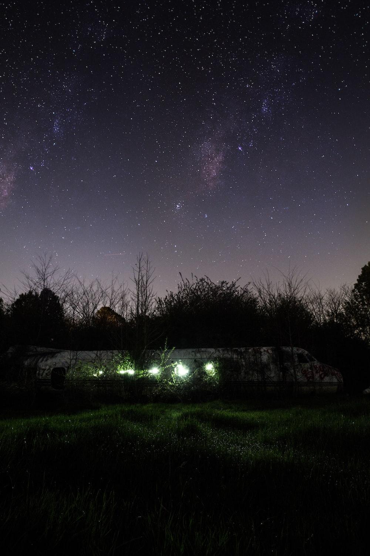 green grass field under starry night