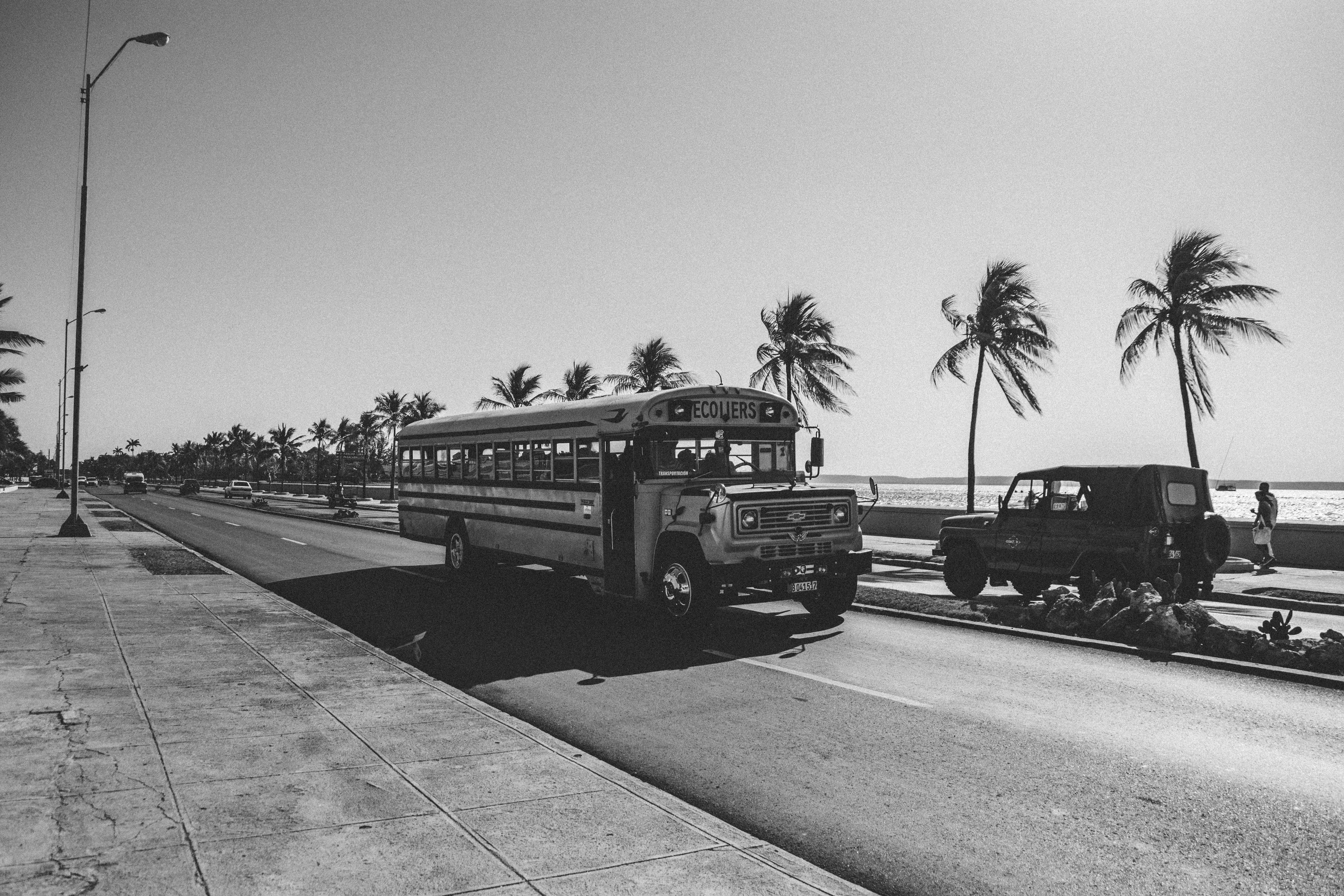 school bus on concrete road during daytime