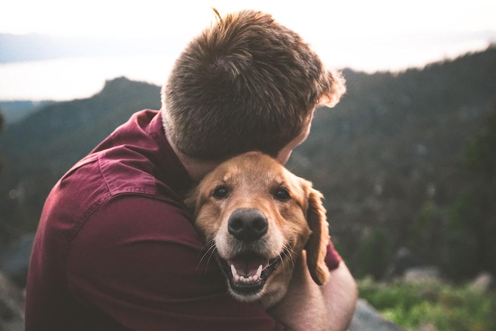 photo of man hugging tan dog
