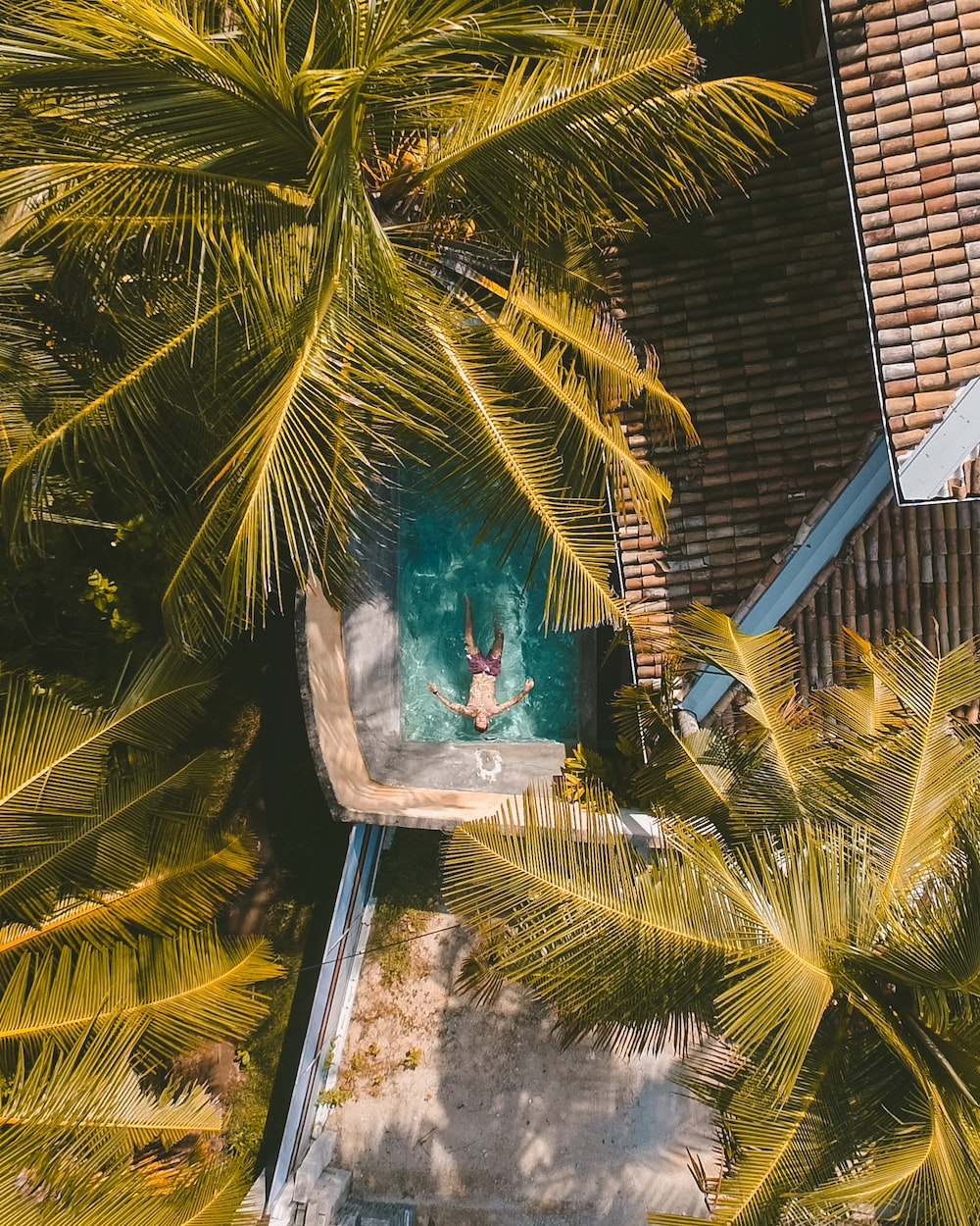 top view of man in swimming pool
