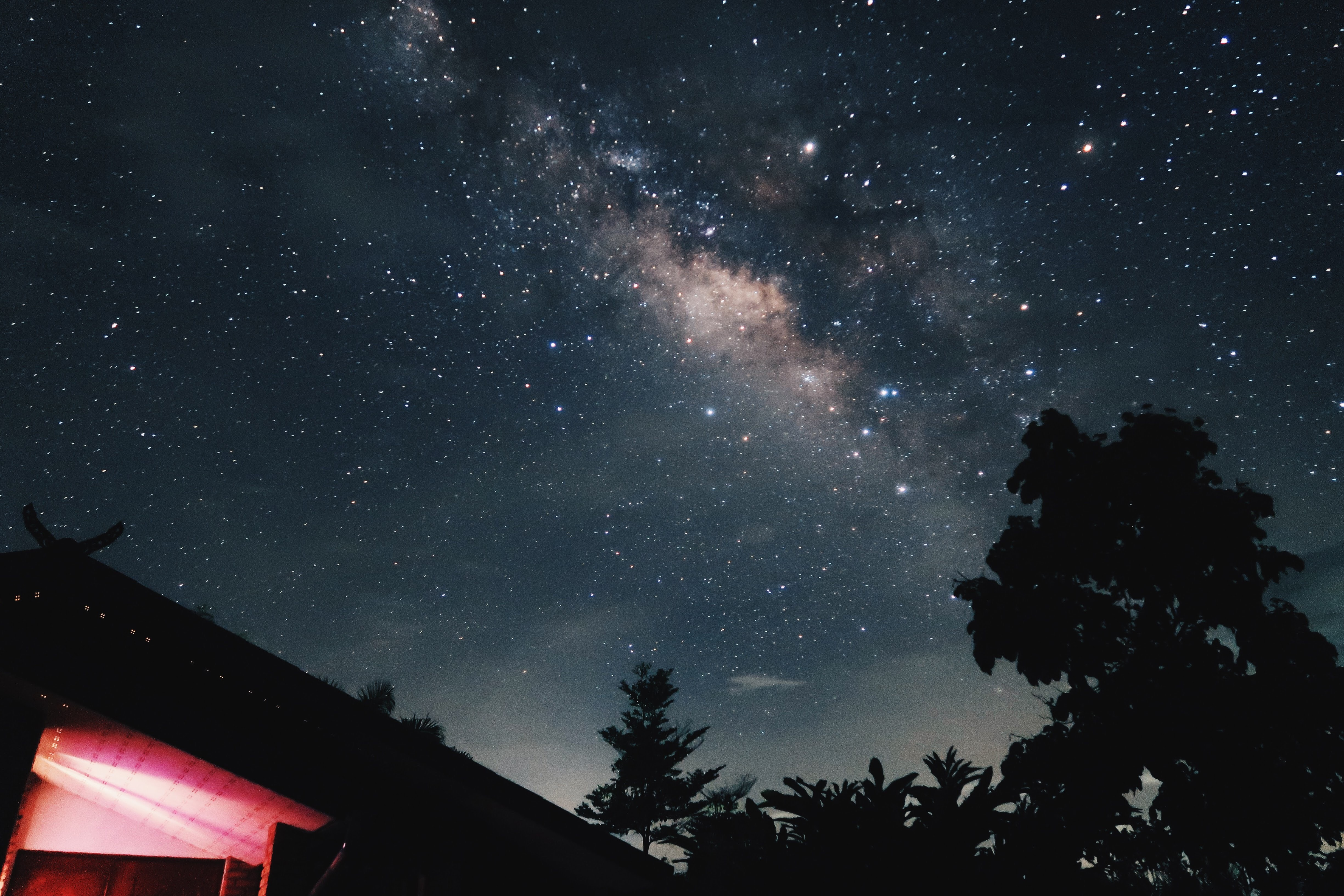 worm's-eye view of house beside tree under starry night