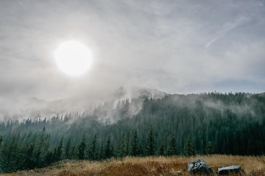 Misty Autumn Morning in Tatra Mountains