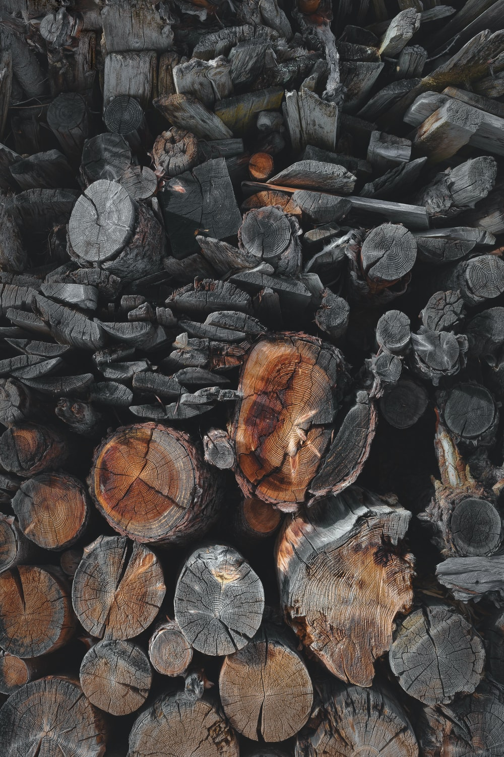 pile of fire woods