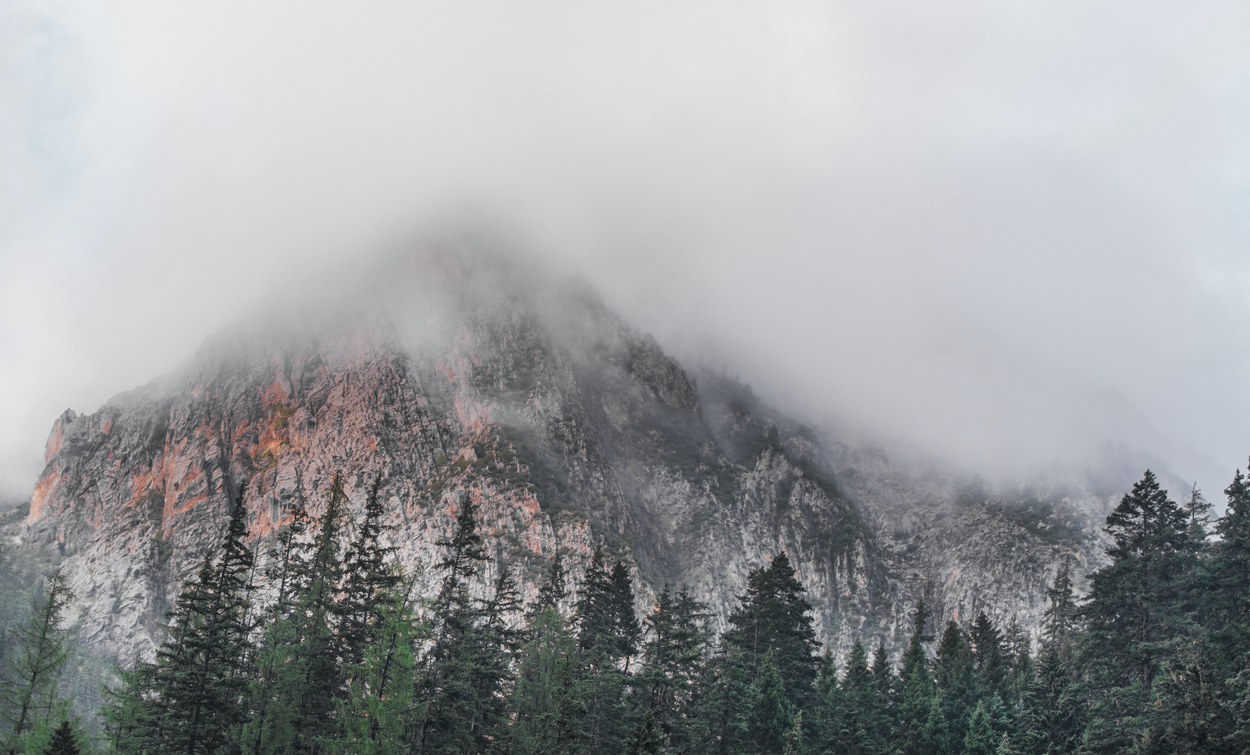 mountain surrounded by forest